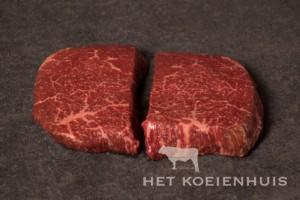 biefstuk_0077
